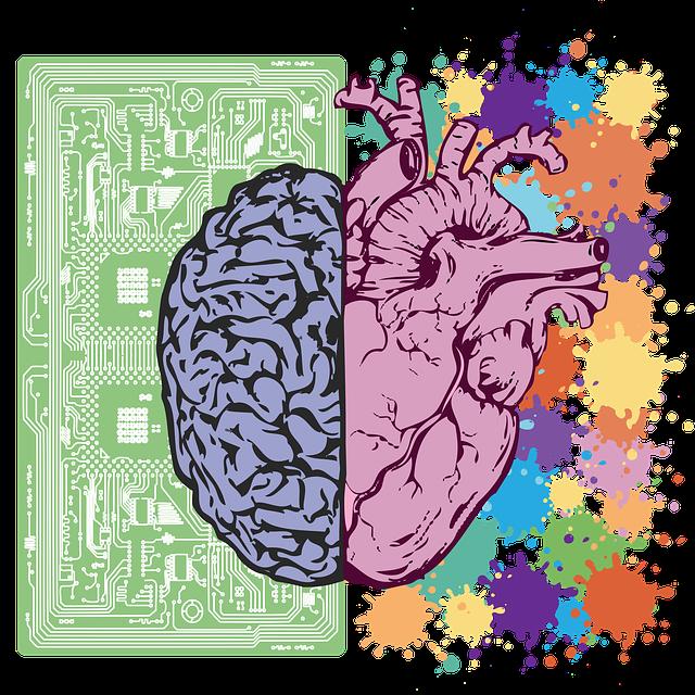 cerveau gauche et droit - cognitif